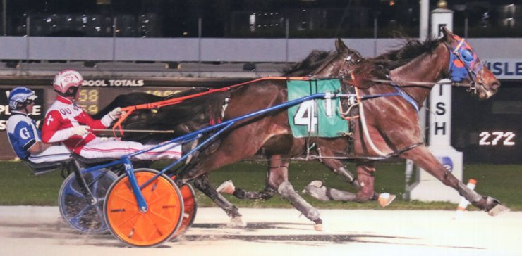 Giant Muscles winning at Pompano Park. Matching his lifetime Mark.