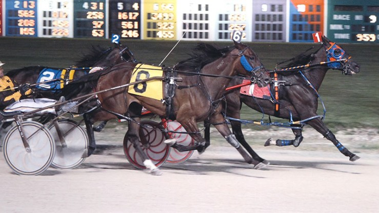 So Reserved winning a race at Maywood Park on September 14, 2012