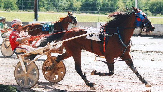 Storm Winds winning a county fair race at Martinsville, Illinois. This was the most exciting race I ever witnessed.  Stormy overcame two breaks and a 23 length gap from the leaders at the 3/4 to win this race on August 20, 2016 at the Martinsville county fair.