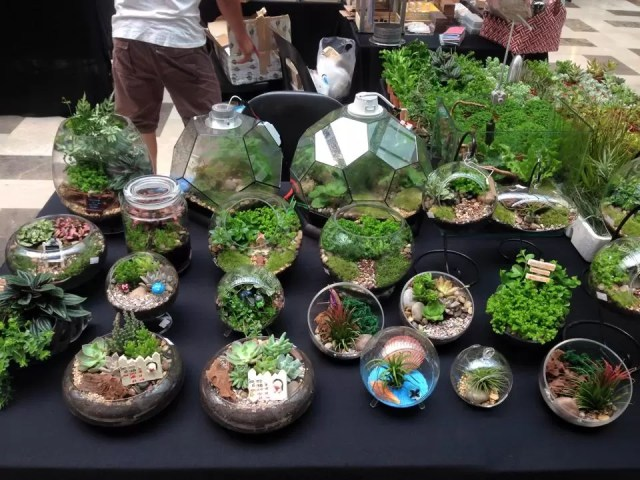 Terrarium 14 Best Places To Find Little Gardens In Klang Valley