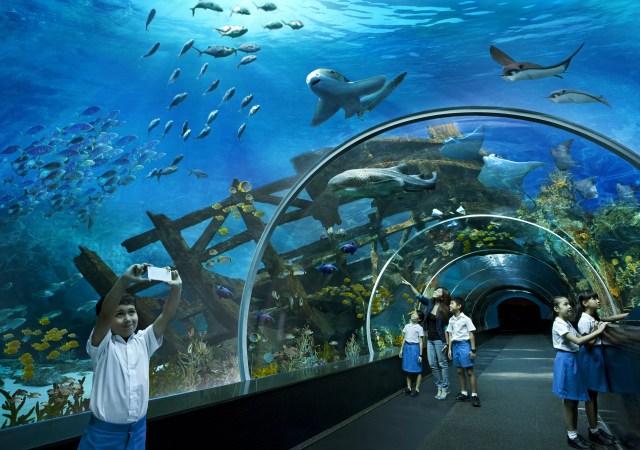 Resorts World Sentosa S.E.A. Aquarium