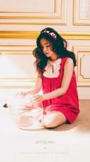 Red Velvet The Velvet Irene