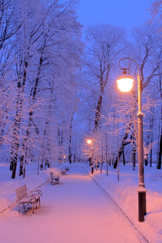 Скачать картинки зима на телефон » Портал современных ...