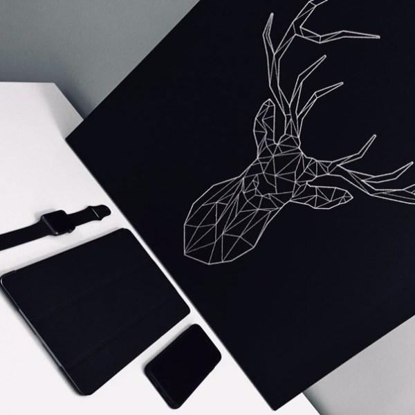 Скачать чёрные сохры на обои телефона » Портал современных ...