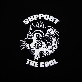 lupe fiasco cool x false t shirt