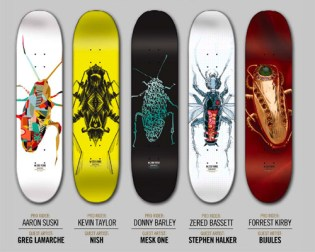 Zoo York Cockroach Artist Series Decks