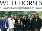 Wild Horses - A Nan Goldin Exhibition for Dior Homme
