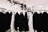 Andrea Mastrovito | Butterfly Installation at Dior Homme Paris