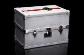 Assouline x Goyard Limited Edition Trunk