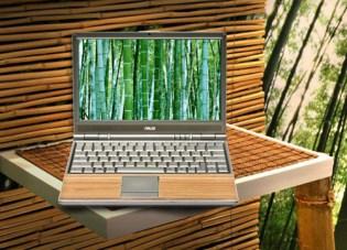 Asus Bamboo Laptop Computer