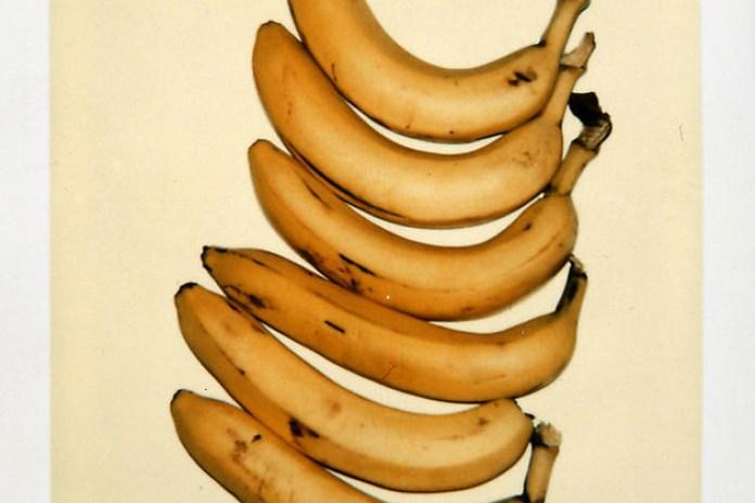 Andy Warhol's Still-Life Polaroids Exhibition