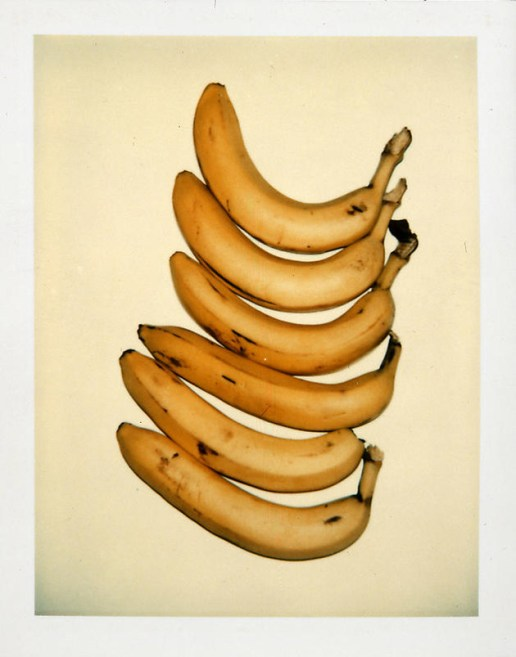 Andy Warhol's Still-Life Polaroids Exhibition