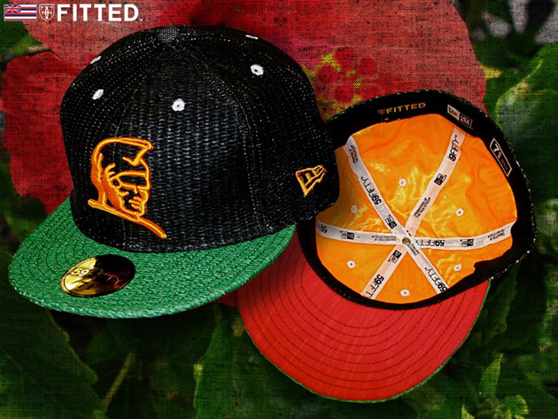 Fitted Hawaii 2009 January Releases