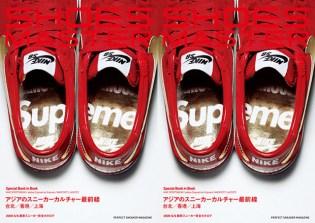 Supreme x Nike SB Shoes Master Vol. 11