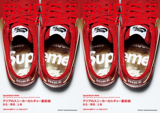 Supreme x Nike SB Shoes Master Vol. 11
