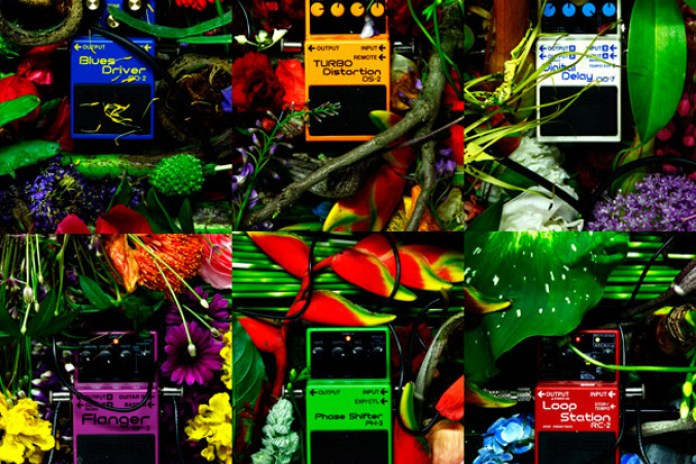 Azuma Makoto | Distortion x Flowers Exhibition