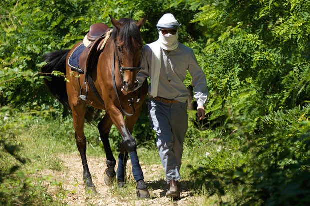 """Camo 2010 Spring/Summer """"Horses"""" Collection"""