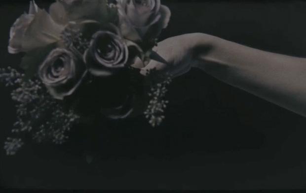 Mnemosyne by Daphne Guinness & David Parker