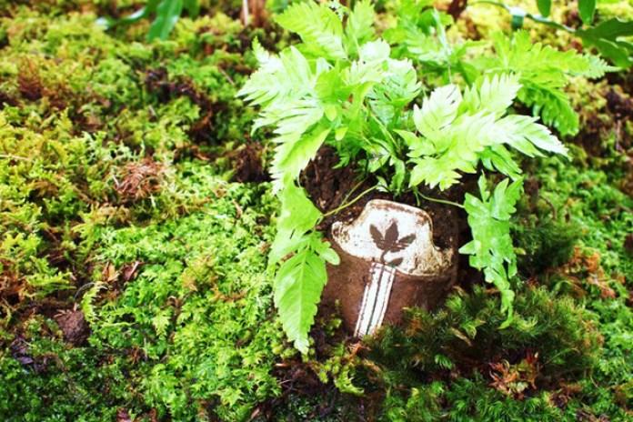 adidas Plants Exhibition at adidas Plantshouse