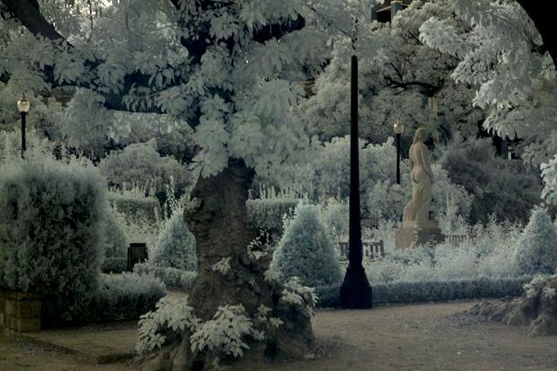 "Lou Reed ""Romanticism"" Exhibition"
