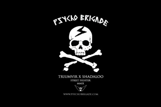 Shadaloo Psycho Brigade by Triumvir
