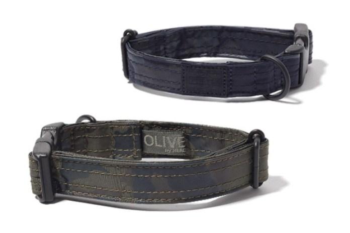 Head Porter Camo Dog Collar & Leash