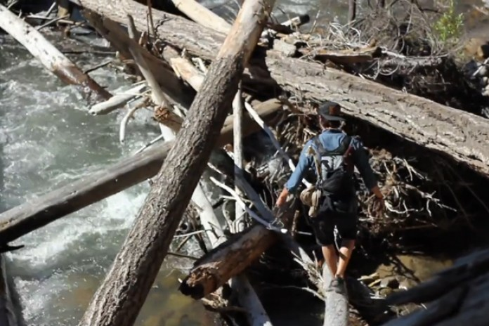 Shwood: Experiment No. 2 - Backcountry Nest