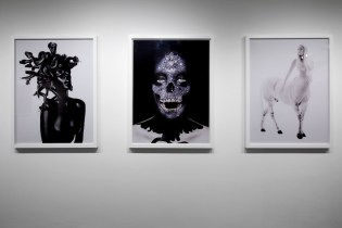 "Damien Hirst & RANKIN ""Myths, Monsters and Legends"" Exhibition @ RANKIN Gallery Recap"
