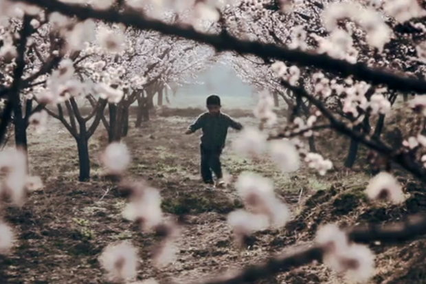 Afghanistan - A Film by Augustin Pictures