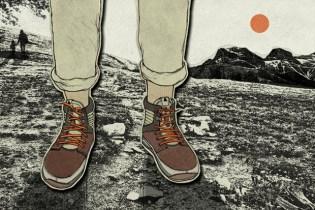 Anna Parini x Volta Strada Illustration