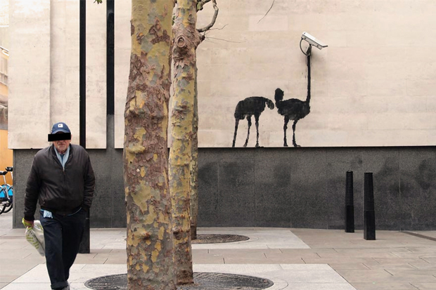 banksy at the national gallery london