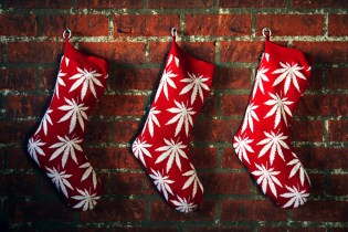 HUF 2011 Holiday Plantlife Christmas Stocking