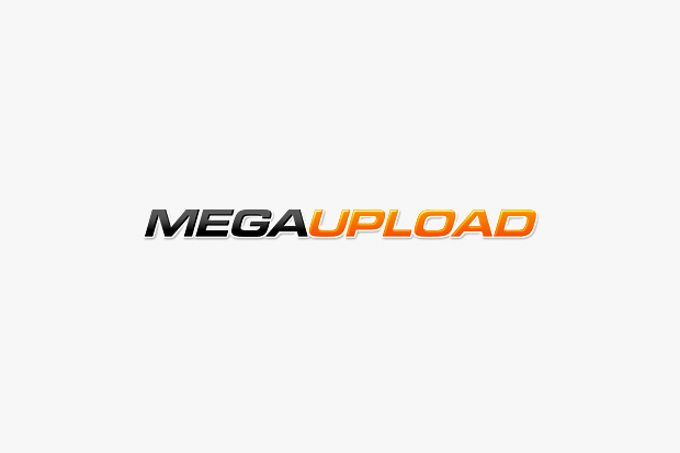 Megaupload Gets Shut Down