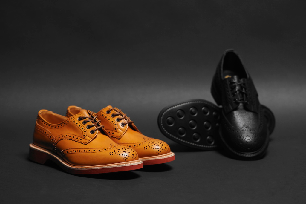 the 101 wingtips