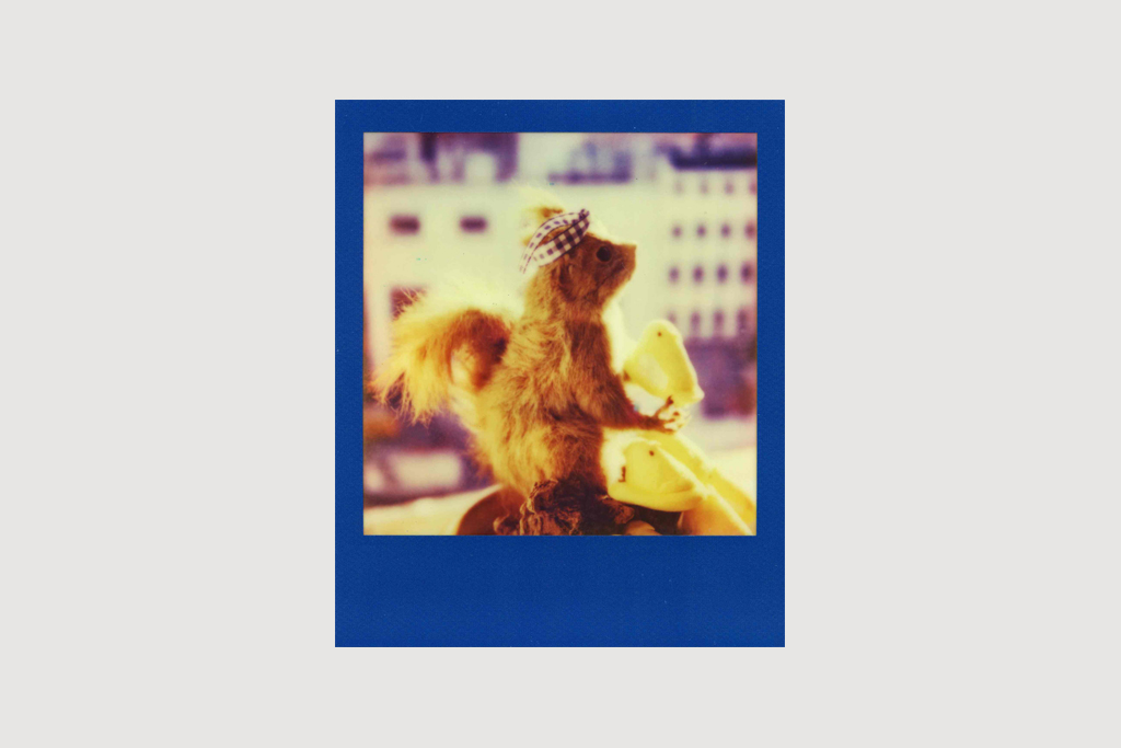 IMPOSSIBLE Film PX 70 Color Shade by NIGO