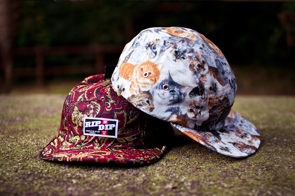 RIP N DIP 2012 Spring/Summer Camp Hats