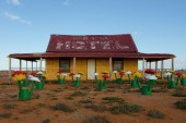 LEGO Sets Up Life-Sized Forest in Australian Outback