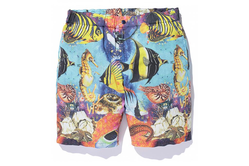 SWAGGER Paradise Shorts