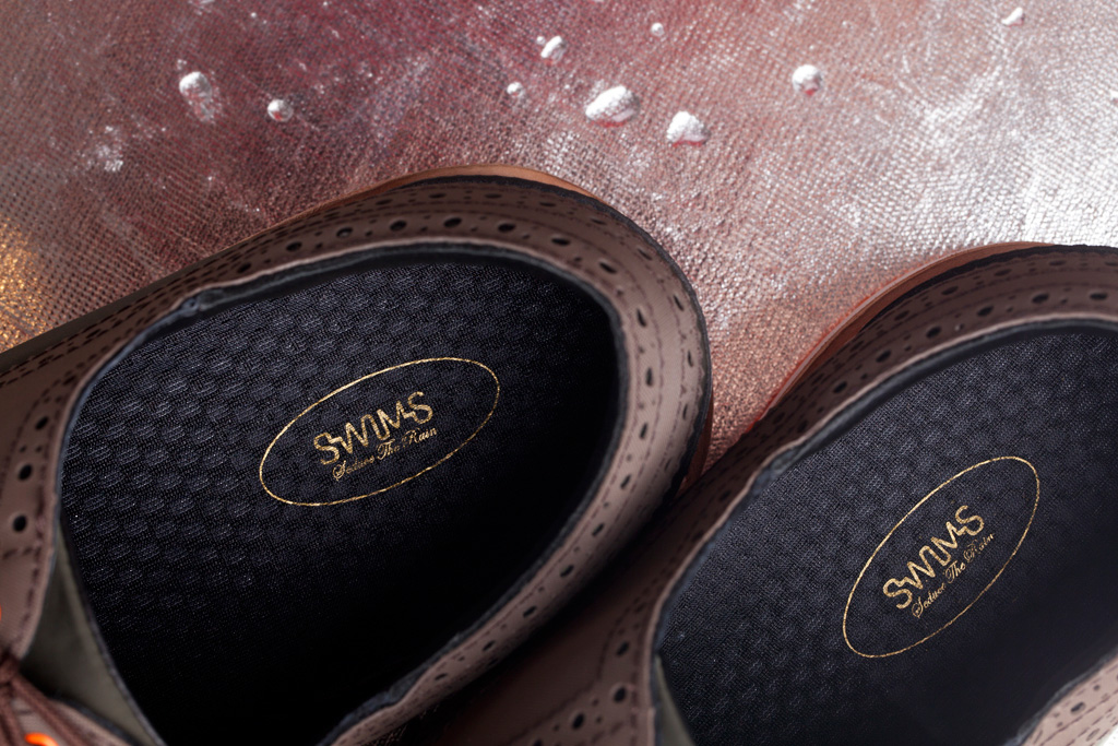 SWIMS 2012 Fall Charles Shoe
