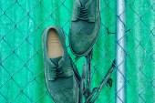 Generic Surplus 2012 Fall Longwing Shoe