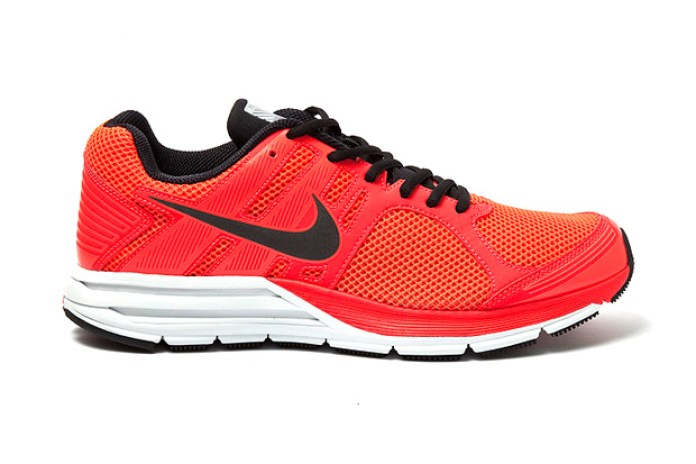 Nike Zoom Structure+ 16 Shield