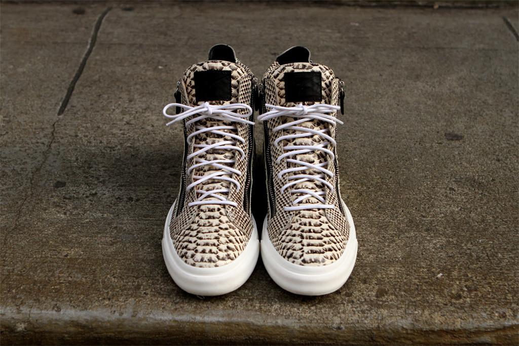giuseppe zanotti snakeskin hi sneaker