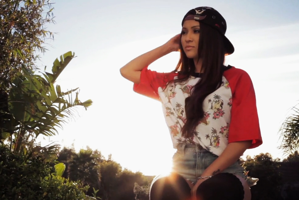 Van Styles x Rook 2013 Spring/Summer Video Lookbook