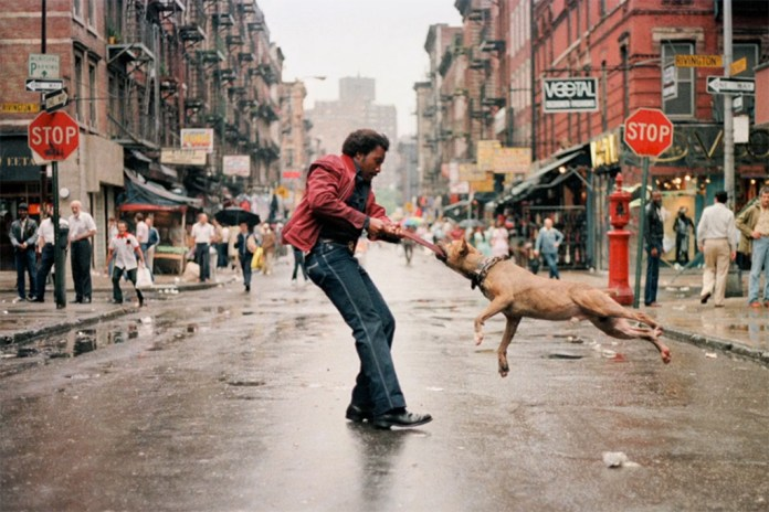 """Everybody Street"" Documents New York City Photography Legends"