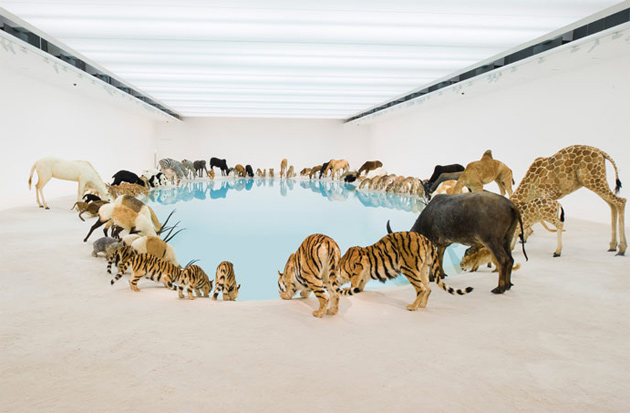 """Cai Guoqiang """"Falling Back to Earth"""" Exhibition @ Queensland Art Gallery"""