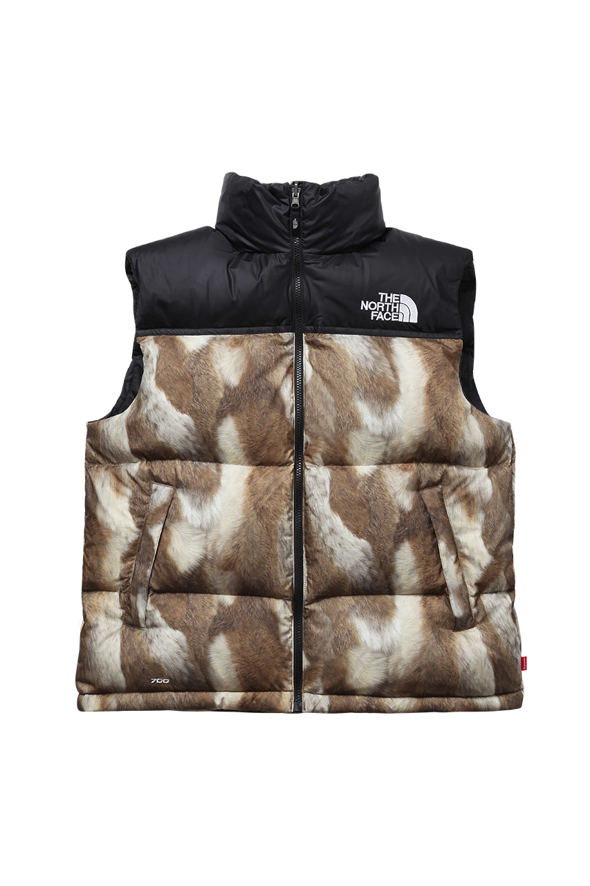 Supreme x The North Face 2013 Fall/Winter Collection