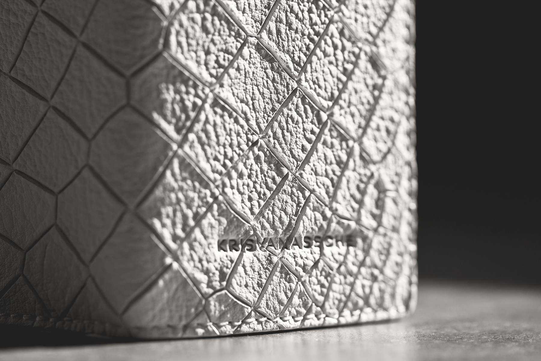 krisvanassche 2014 spring summer croc skin accessories