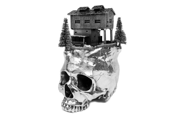 Frodo Mikkelsen's Landscapes on Skulls