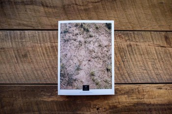 The Collective Quarterly Issue Ø