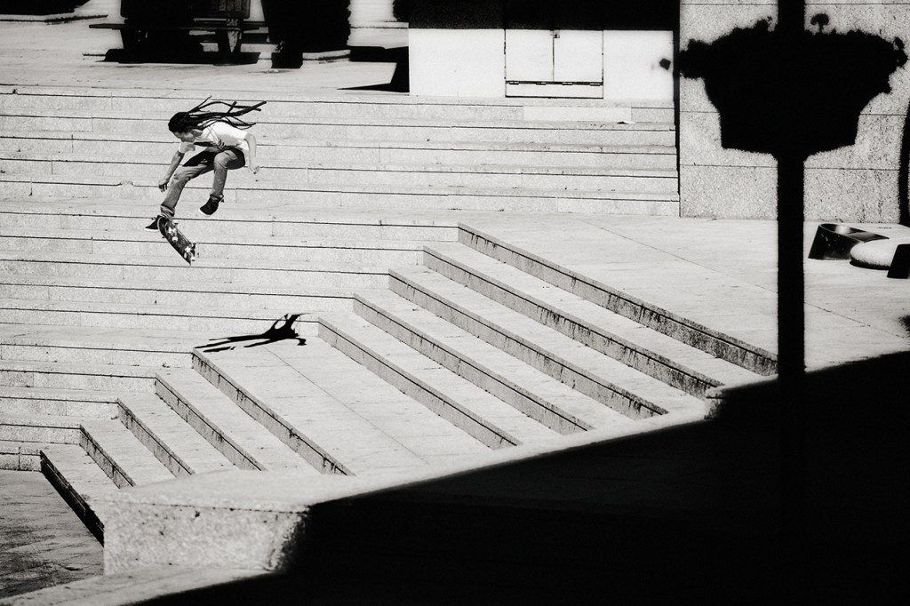 Element 'A Life In Transition' Book by Brian Gaberman